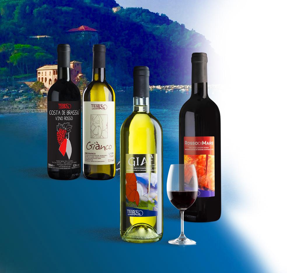 I vini dell'Azienda Agricola Terre di Levanto